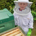 Bienenstock mit Kind